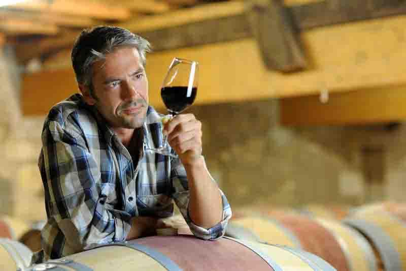 молодое домашнее вино