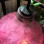 Брожение домашнего вина из винограда