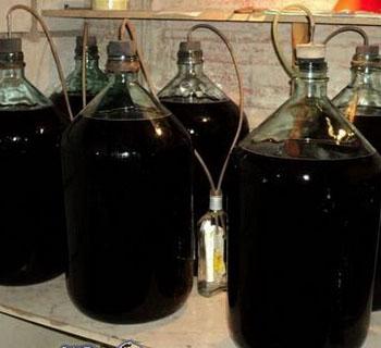 При какой температуре должно бродить домашнее виноградное вино