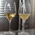 Почему домашнее вино мутное