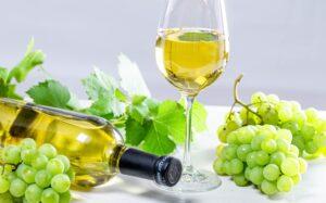 Лучшие сорта неукрывного технического винограда